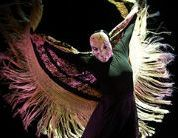 """Eva Yerbabuena """" Apariencias theatre tickets - Flamenco superstar Eva Yerbabuena is renowned internationally as being one of Spain™s leading dancers. Accompanied by four dancers and her critically acclaimed ensemble of musicians, including African http://www.comparestoreprices.co.uk/january-2017-3/eva-yerbabuena-""""-apariencias-theatre-tickets-.asp"""