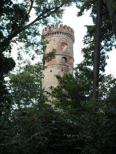ruiny zamku w Rudnicy woj .dolnośląskie Poland
