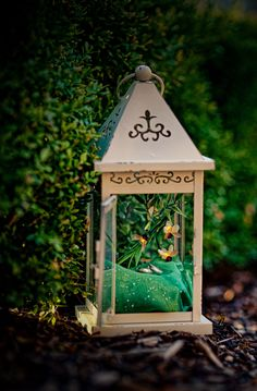 Enchanted Forest lantern for the fairies of Silvanae