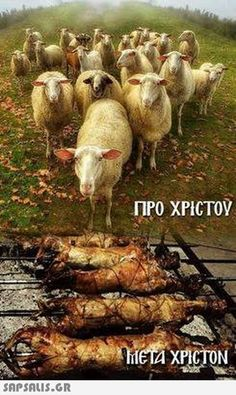 Funny Greek, Funny Memes, Jokes, Greek Quotes, Butt Workout, Make Me Smile, Lol, Photography, Animals