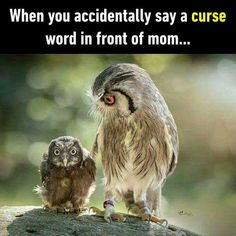 When you accidently say a curse word in front of mom