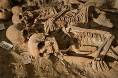 Routine renovations on a supermarket in Paris have revealed several mass burial pits at what was once an ancient hospital in the city.