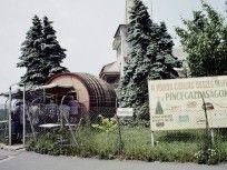 1972, Golfpálya út, 12. kerület Budapest, Tarot, Outdoor, Outdoors, Outdoor Living, Garden, Tarot Decks, Tarot Cards