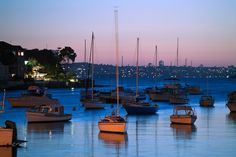 As the sun sets on Sydney Harbour at Manly Cove