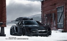 WINTER MONSTER
