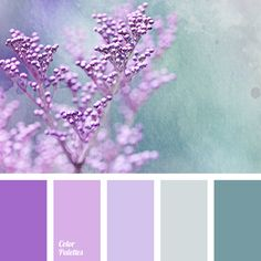 Ideas bedroom purple accents color pallets for 2019 Purple Color Schemes, Purple Color Palettes, Paint Color Palettes, Paint Color Schemes, Colour Pallette, Bedroom Color Schemes, Lilac Color, Color Combos, Gray Color