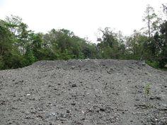 Active Mud Volcanoes, Diglipur, Andaman and Nicobar Islands