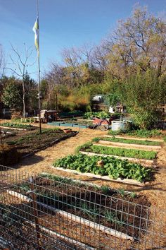 How to Make Cheap Garden Beds - You'll have your best garden ever if you create permanent garden beds — whether they're raised beds, at ground level, framed or unframed. | Mother Earth News