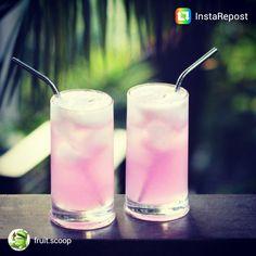 Follow fruit.scoop on instagram!