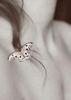 by Lori Novo | Feeling Butterflies |