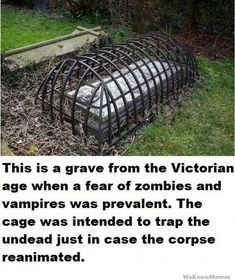 This is a grave from the Victorian age when a fear of zombies and vampires was prevalent.  The cage was intended to trap the undead just in case the corpse reanimated.