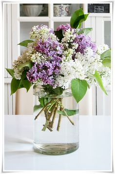 more beautiful lilacs