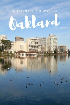 5 Things To Do In Oakland, California