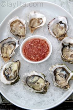 How to open oysters, love the sauce too!