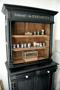 Cabinet of curiosity. DR The furniture of the photographer - Furniture Making, Cool Furniture, Painted Furniture, Living Room Ideas 2019, Cabinet Of Curiosities, Look Vintage, Repurposed Furniture, Home Staging, Furniture Makeover