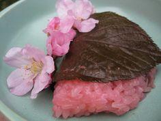 Sakura Mochi (cherry blossom rice cakes).