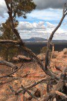 A view across the lava to Gallo Peak in the Zuni mountains. - Narrows Rim Trail