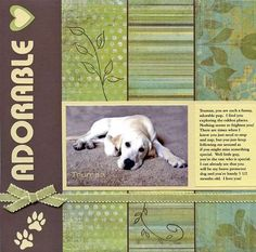 Adorable puppy | patterned paper blocking makes the photo of the dog that much more adorable | love the punched (?) paw prints, too