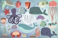 Sea Life Clipart Volume 2 Ocean Clip Art Set by KennaSatoDesigns Life Design, Web Design, Graphic Design, Cute Vector, Summer Clipart, Creative Sketches, Pencil Illustration, Beach Art, Watercolor And Ink