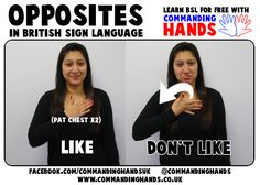 Like and Don't Like in British Sign Language British Sign Language Alphabet, Baby Sign Language Video, Sign Language Chart, Sign Language Phrases, Sign Language Interpreter, Learn Sign Language, American Sign Language, British Sign Language Dictionary, English Sign Language