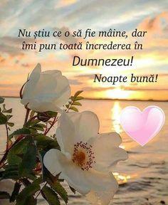 God Prayer, Good Morning, Prayers, Faith, Plants, Night, Acupuncture, Buen Dia, Bonjour