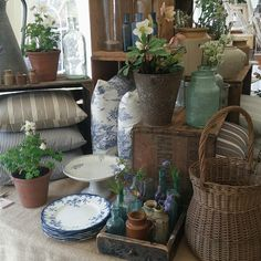 Our stand at the Walled Garden Spring fair.