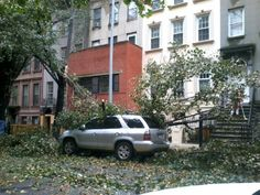 Just got home to discover almost every car along my NY street has been smashed by trees. #Sandy