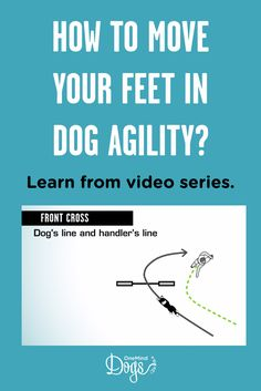 The importance of the agility handler's footwork is easily overlooked when learning handling techniques. In each handling technique, every single step you take matters; they should seamlessly take you to your next position on the course without wasting an Agility Training For Dogs, Dog Agility, Dog Training Tips, Outside Dogs, Dog Line, Dog Area, Easiest Dogs To Train, How To Run Faster, Dogs