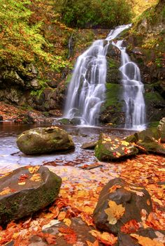 Autumn Gold Spruce Flats Falls the Great Smoky Mountains National Park. Mid to Late October is the peak color season. This is a nice 20-30 minute moderate difficulty hike suitable for all ages. Photo by Waterfall Guy. Source Flickr.com