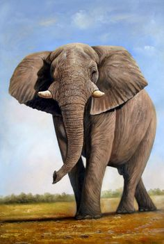 "High Quality OIL Painting ""African Elephant VII"" 24x36 