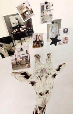 Papier peint aimanté Groovy Magnets Girafe