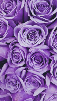 Purple Flowers Wallpaper, Purple Wallpaper Iphone, Purple Backgrounds, Aesthetic Iphone Wallpaper, Wallpaper Backgrounds, Aesthetic Wallpapers, Mobile Wallpaper, Violet Aesthetic, Dark Purple Aesthetic