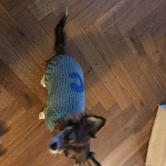 Items similar to Pet Clothing, Dog Sweater, Small Dog Clothes, Crochet Dog Sweater, Pet Sweater by BubaDog on Etsy Small Dog Sweaters, Small Dog Clothes, Puppy Clothes, Chihuahua Clothes, Crochet Dog Clothes, Crochet Dog Sweater, Pull Crochet, Dog Harness, Dog Leash
