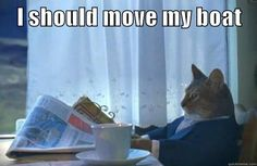 An I Should Buy A Boat Cat meme. Caption your own images or memes with our Meme Generator. Funny Cat Memes, Funny Cats, Hilarious, Grumpy Cats, Fb Memes, Funny Animals, Buy A Boat, Photo Chat, The Empire Strikes Back
