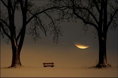 last of the moon