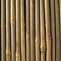 How To Cut Bamboo Poles In Half Thumbnail