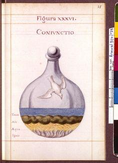 Figura XXXVI - Coniunctio - Sapientia veterum philosophorum, sive doctrina eorumdem de summa et universali medicina 40 hierogliphis explicata