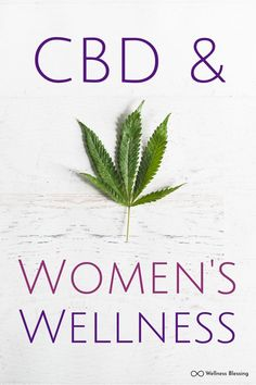"""CBD for Women's Wellness: The Endocannabinoid System, Anandamide, and the Uterus Photos Comments "" Green Coffee Extract, Health And Fitness Magazine, Endocannabinoid System, Womens Wellness, Start Ups, Cbd Hemp Oil, Cannabis Plant, Oil Benefits, Coffee Benefits"