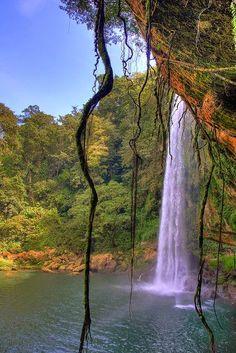 Misol-Ha Waterfall in Chiapas, Mexico