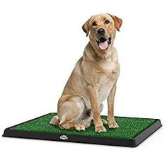 PETMAKER Artificial Grass Bathroom Mat for Puppies and Small Pets- Portable Potty Trainer for Indoor and Outdoor Use by Puppy Essentials 20 x 25 Dog Training Methods, Basic Dog Training, Training Pads, Training Classes, Training Collar, Crate Training, Indoor Dog Potty, Indoor Cats, Dog Litter Box