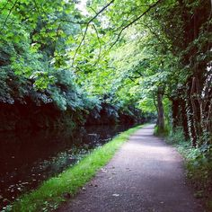 Leeds-Liverpool Canal towpath at the Armley-Kirkstall border. Photo by Sequin World Leeds, Liverpool, World, The World, Earth
