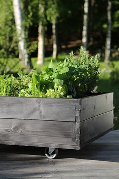Start A Spring Garden With DIY Raised Garden Beds – Deena Dolan - Garten Dekoration Raised Herb Garden, Raised Vegetable Gardens, Raised Gardens, Garden Boxes, Garden Planters, Diy Garden, Spring Garden, Garden Planning, Garden Projects