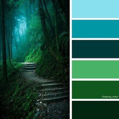 Shades Of A Forest Walkway (Photo Credit • 500px.com/gpx2000) #chasingcolor #colorthemes #colorful #color #palette #colorpalette #shades #tones #hues #colorinspiration #inspiration #creative #art #photography #design #theme #forest #walkway #corridor #stairway #green #nature #verdant #trees