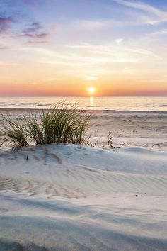 Beach | Moment's