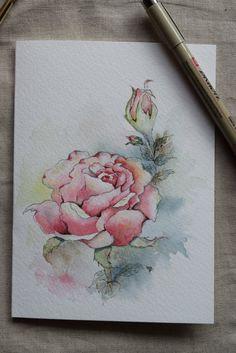 Pink Rose Watercolor Painted Card Original Art by SunsetPeonies Watercolor Cards, Watercolor And Ink, Watercolour Painting, Watercolor Flowers, Painting & Drawing, Watercolors, Paint Cards, Plant Drawing, Watercolor Techniques