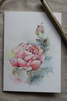 Pink Rose Watercolor Painted Card Original Art by SunsetPeonies