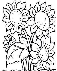 Pintura Em Tecido - Venha Aprender Pintura em Tecido: Riscos flores
