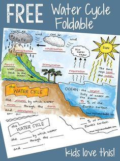 Free water cycle interactive notebook activities & more science doodle free! the water cycle interactive Elementary Science, Middle School Science, Science Classroom, Teaching Science, Science Education, Science Activities, Interactive Activities, Water Cycle Activities, Science Experiments
