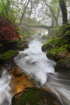 Tui, Galicia, Spain; photo by .Siju