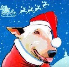 Santa Bully's Coming To Town!!